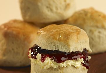 Large plain scone